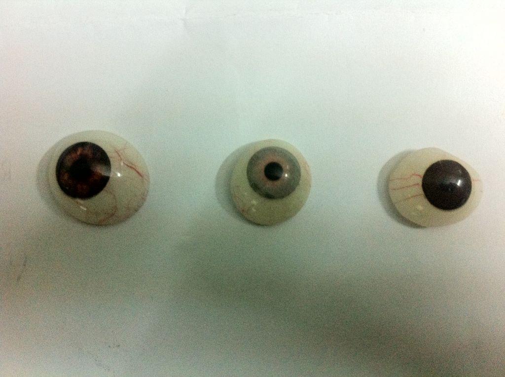 Artificial eye/Prosthetic eye shells