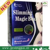 Magic Weight Loss Product - Slimming Magic Bean