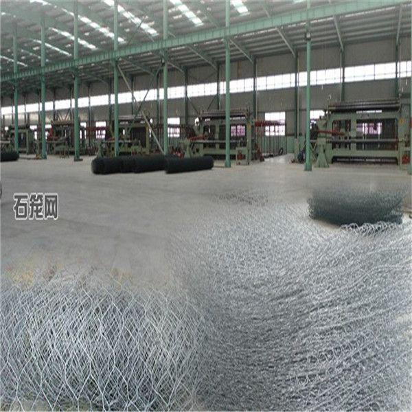 Hot Sale PVC Coated Iron Wire Gabion mesh