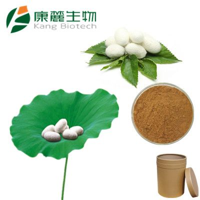 Silkworm Pupa Powder