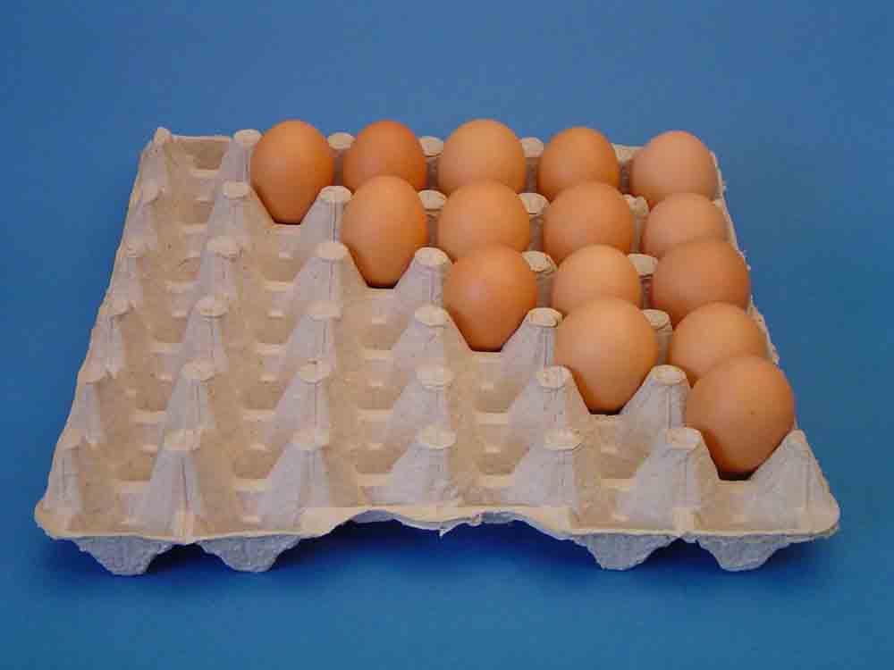 Egg trays