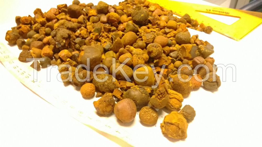 100% High Quality Cow Gallstones for sale