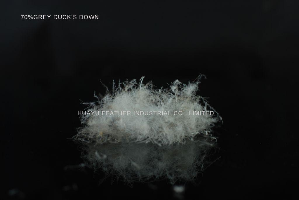 70%Grey Duck's Down