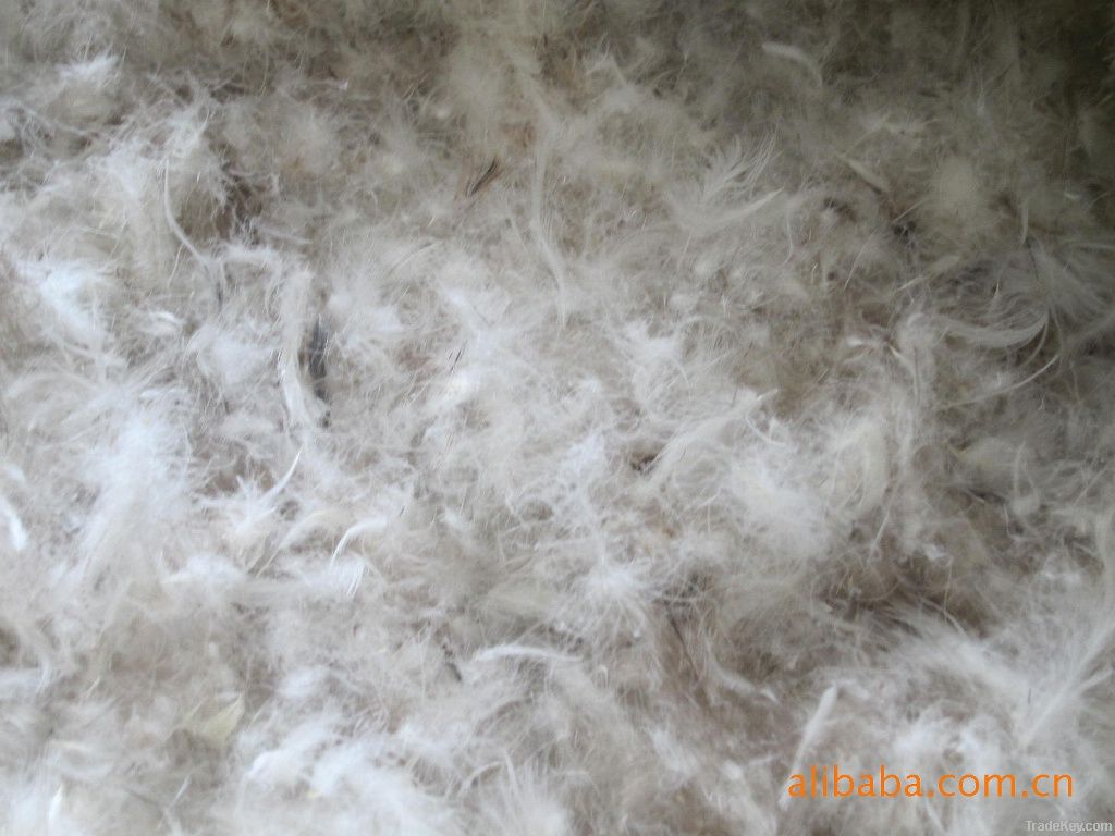 Hot sale 90% grey duck down and feather