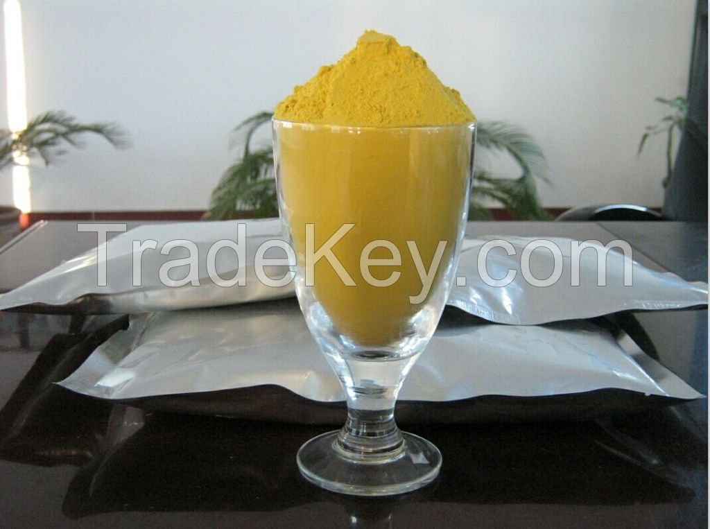 Processed pumpkin powder