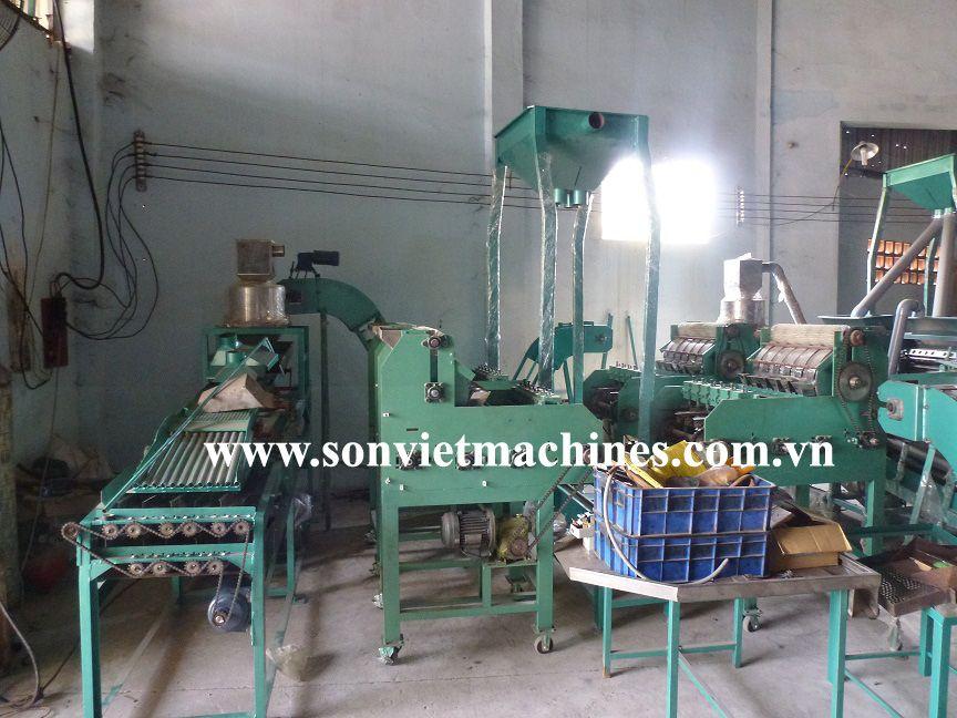 Full auto cashew shelling  line