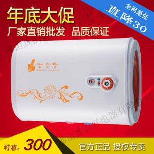 electric water heater cheap double gall