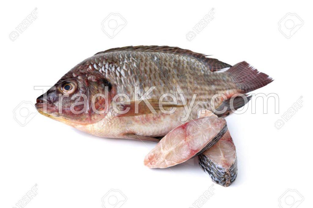 Fresh Seafood,
