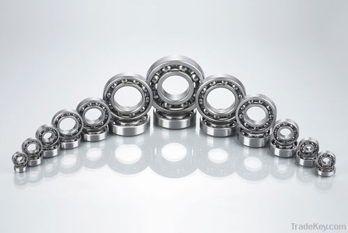 6000Series Deep Groove Ball Bearing