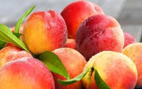 Quality FRESH PEACHES