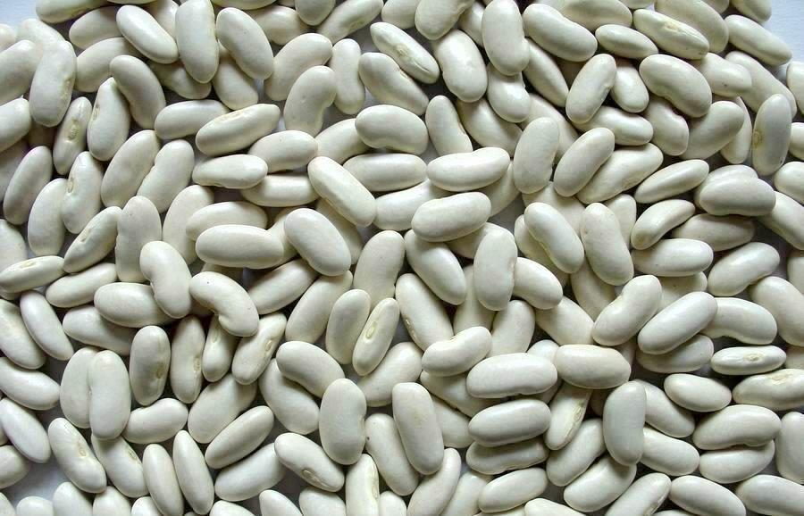White Kidney Beans, Red Kidney Beans and Black Kidney Beans
