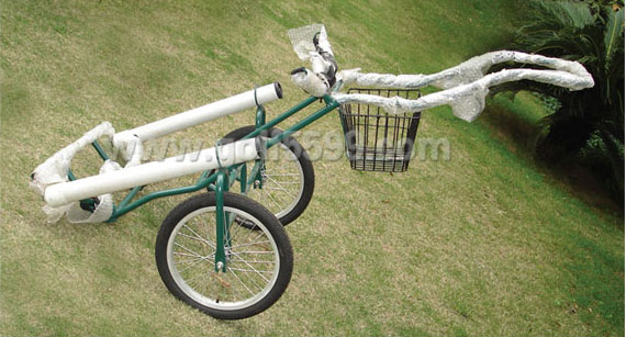 Golf Bags Stand, Golf Rack