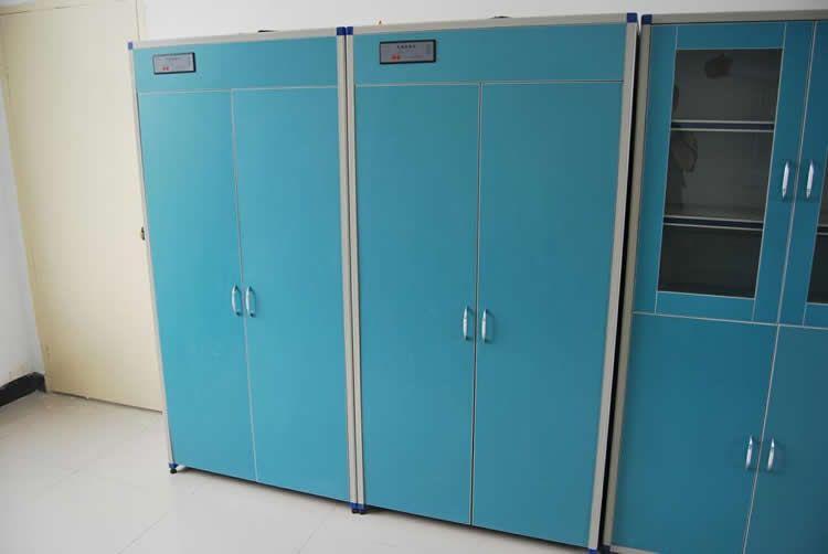 lab gas cylinder cabinet