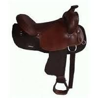 Horse Saddlery and Leather Goods