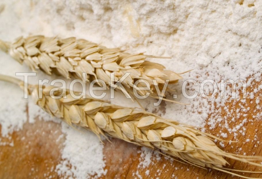 Flour(All purpose)