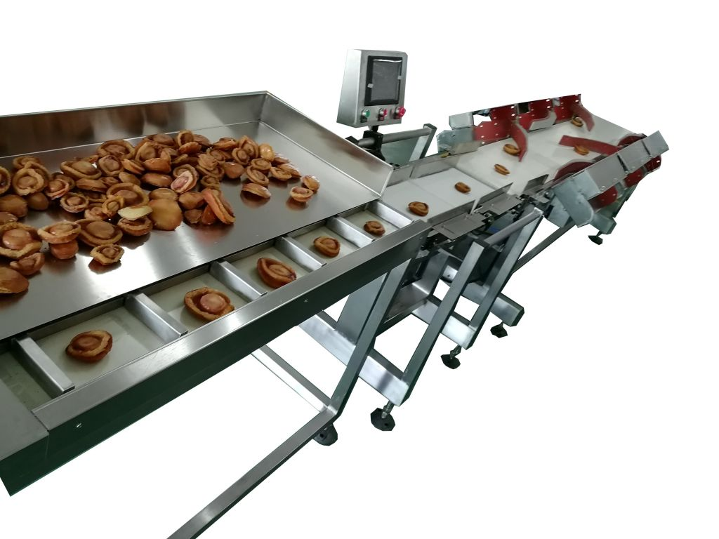 seafood / abalone/ oyester/sea cucumber  weight sorting machine