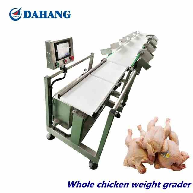 Poultry / whole chicken weighing grading sorting machine/ Weight grader