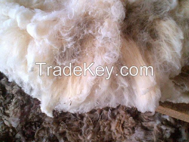 Merino Greasy Wool