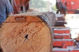Rough Cut Timbers, Beams and Lumber