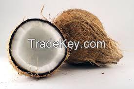 Coconut semi husked