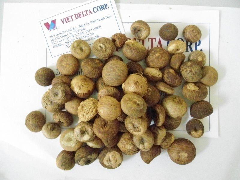 betel nuts without husks