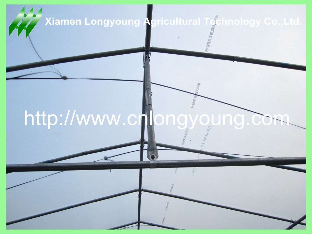 single span greenhouse