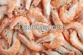 Frozen Horse Mackerel W/R, Sardine, Shrimp, Tilapia Fish (Frozen W/R), Stock Fish, Spanish Mackerel Fish