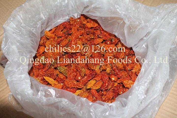 Certified HACCP Bhut jolokia Chilli
