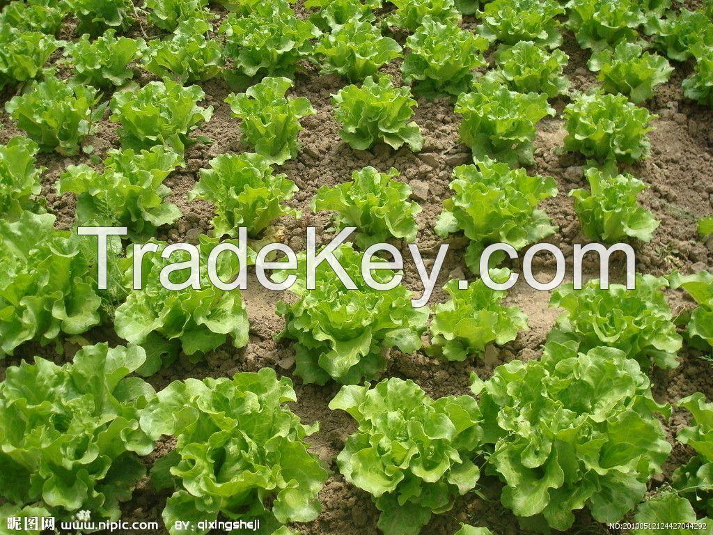 weed control pe agriculture black mulch film