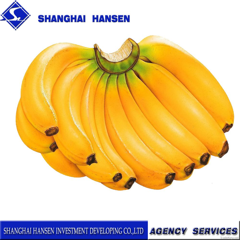 fruit import and export agent