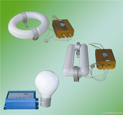 price of energy saving light induction lamp