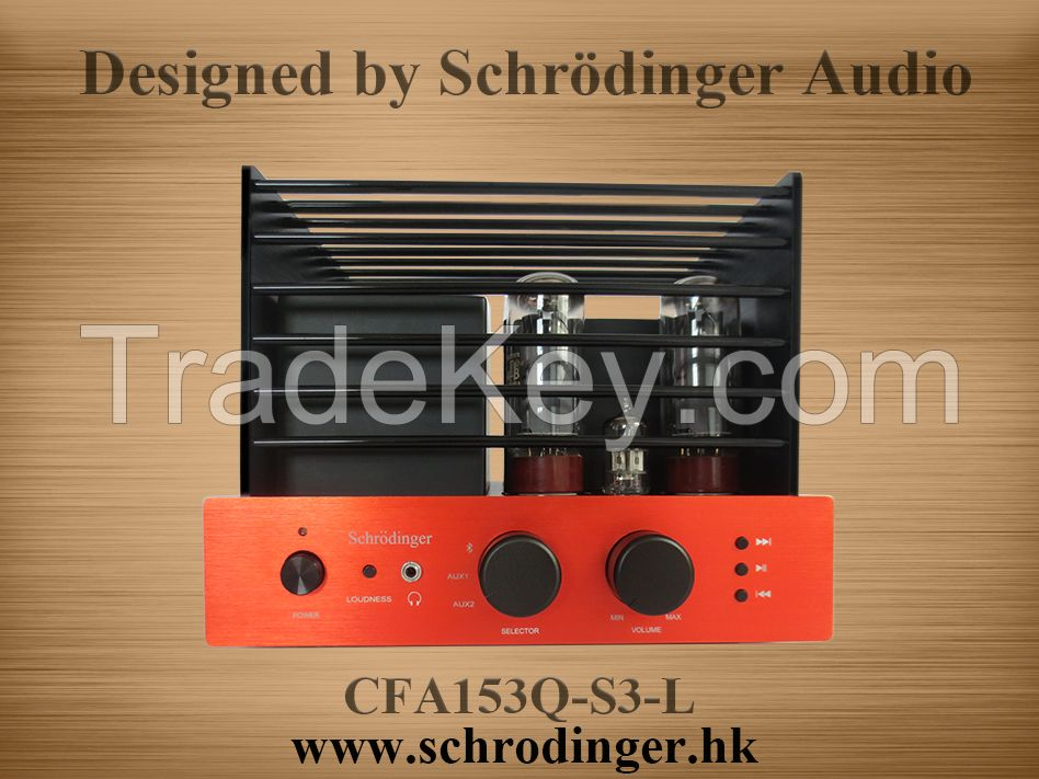 EL34 Vacuum Tube Amplifier, Aluminum Chassis and Amplifier Cage