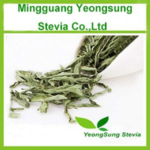 Natural Herbal Stevia Leaf