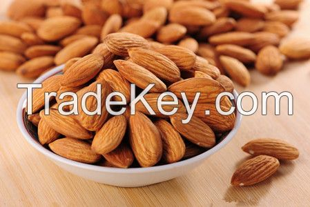 Natural Almond/dried almond/dried fruit with High Quality