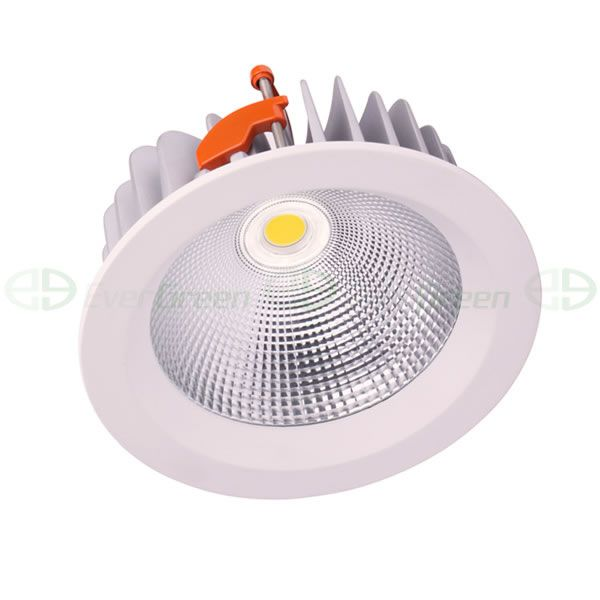led downlight ceiling light