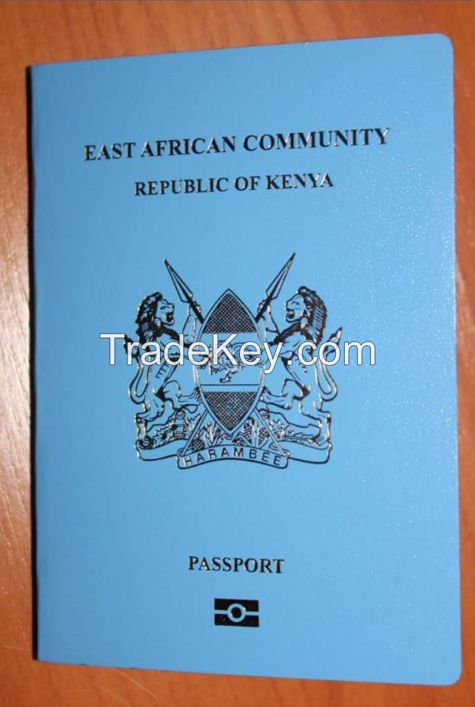 kenyan immigration solutions