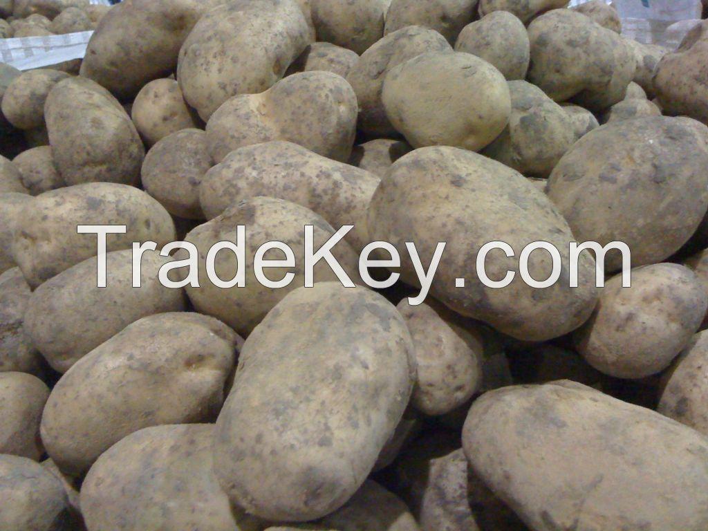 Fresh Belgian Potatoes
