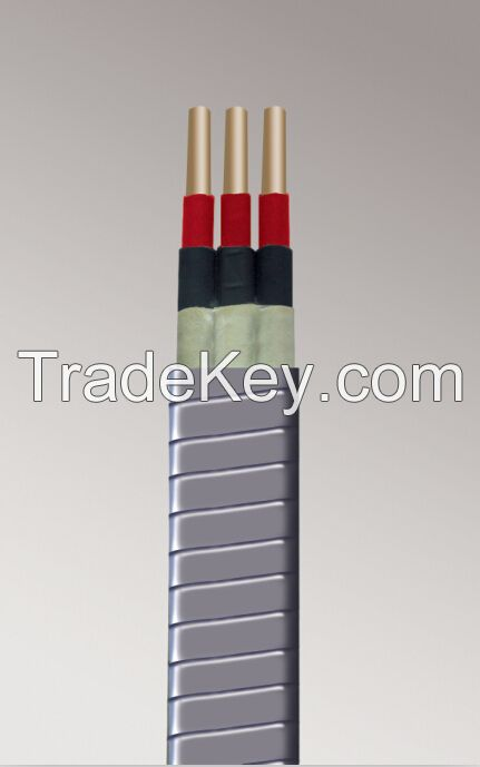 Down Hole Cable
