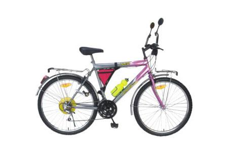 Adult Mountain Bike (ANBYD2611)