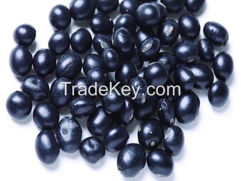 2014 new crop big black bean / black soya bean