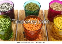 CHICK PEAS, MUNG BEANS, RED LENTILS, YELLOW PEAS
