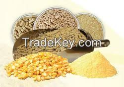 Alfalfa Hay, Yellow Corn, Chicken Feed, Wheat, Animal Feed, Soybean meal