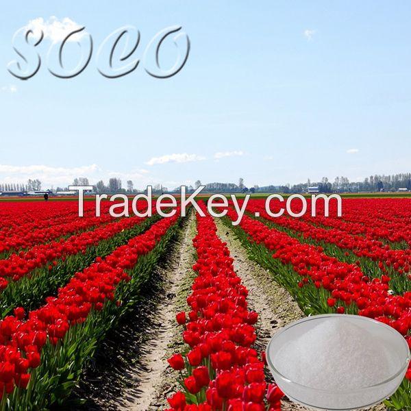 Super Polymer for Agriculture