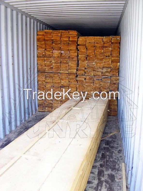 Birch lumber (timber)