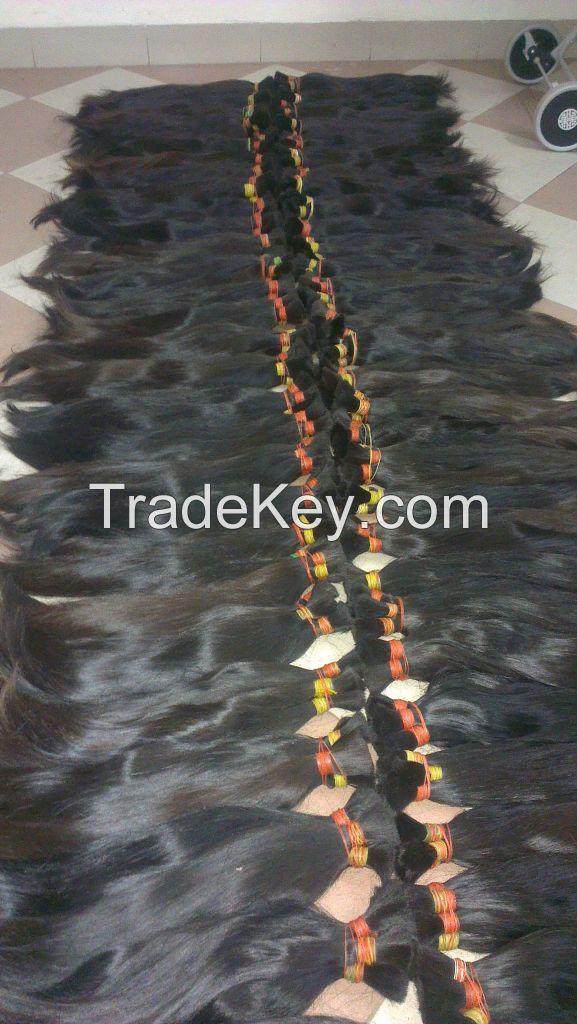 APO HAIR