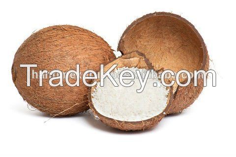 Vietnam Desiccated coconut High Fat - Fine Grade