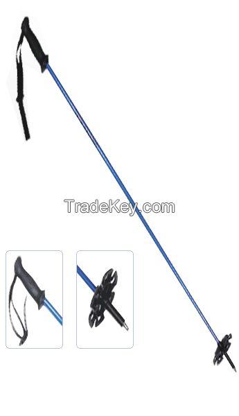 Carbon Fiber Ski Pole