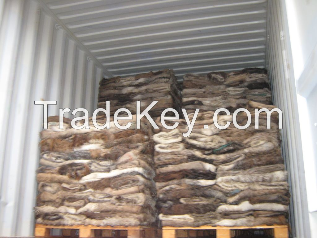 Wet / Dry Salted Donkey Hides
