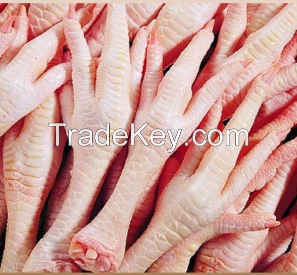 BEST QUALITY FROZEN CHICKEN FEET  AVAILABLE