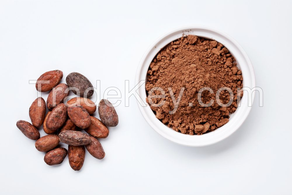 Instant Hot Chocolate Powder In Stock